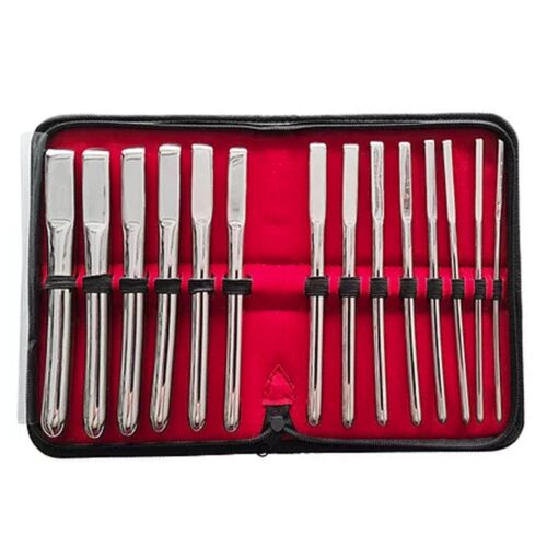 Rouge Stainless Steel Hegar Uterine Dilator 14pc Set